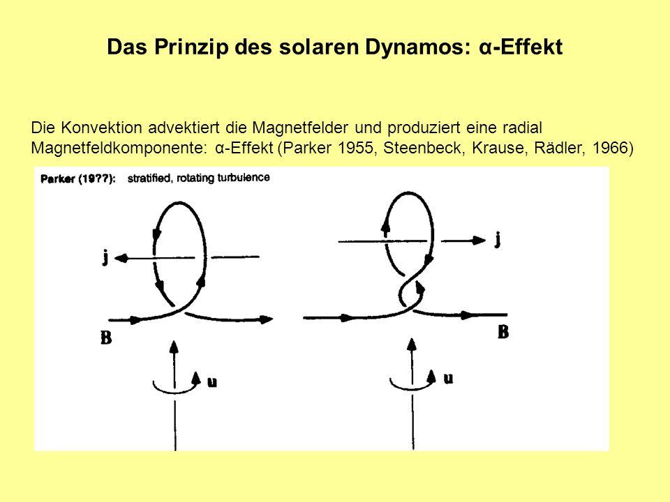 Das Prinzip des solaren Dynamos: α-Effekt Die Konvektion advektiert die Magnetfelder und produziert eine radial Magnetfeldkomponente: α-Effekt (Parker 1955, Steenbeck, Krause, Rädler, 1966)