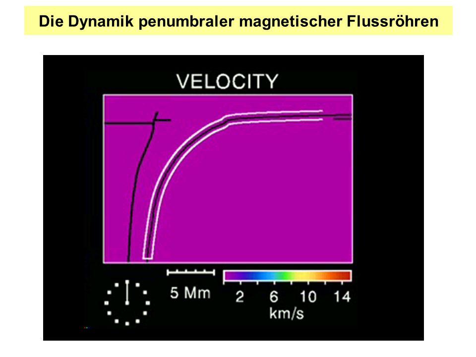 Die Dynamik penumbraler magnetischer Flussröhren