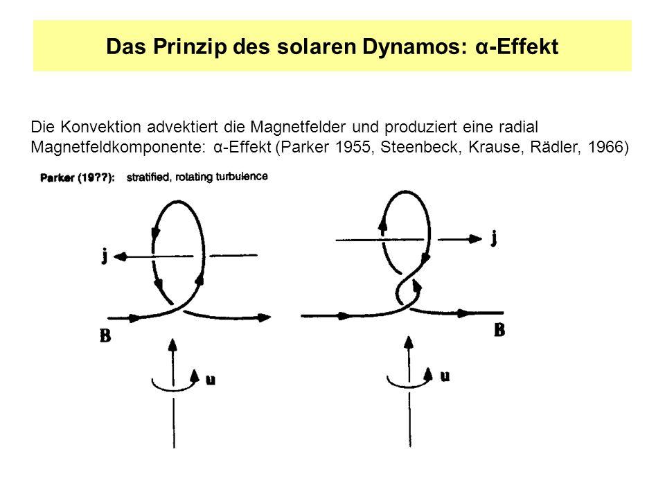 Das Prinzip des solaren Dynamos: α-Effekt Die Konvektion advektiert die Magnetfelder und produziert eine radial Magnetfeldkomponente: α-Effekt (Parker