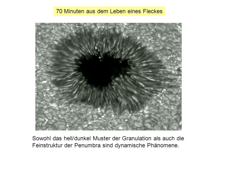 70 Minuten aus dem Leben eines Fleckes Sowohl das hell/dunkel Muster der Granulation als auch die Feinstruktur der Penumbra sind dynamische Phänomene.