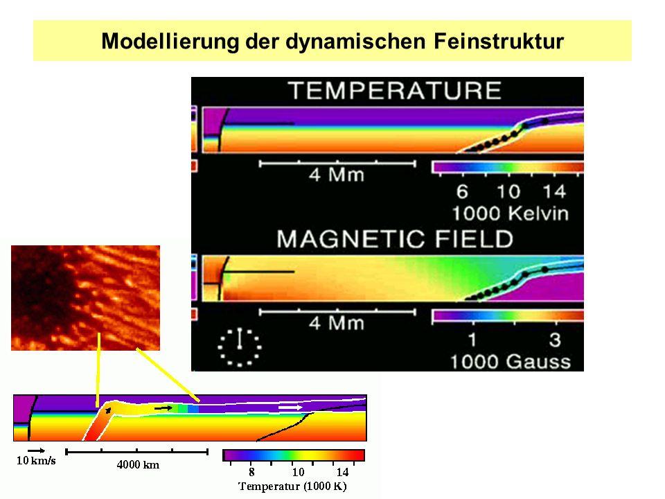 Modellierung der dynamischen Feinstruktur