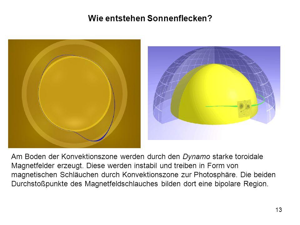 13 Wie entstehen Sonnenflecken? Am Boden der Konvektionszone werden durch den Dynamo starke toroidale Magnetfelder erzeugt. Diese werden instabil und