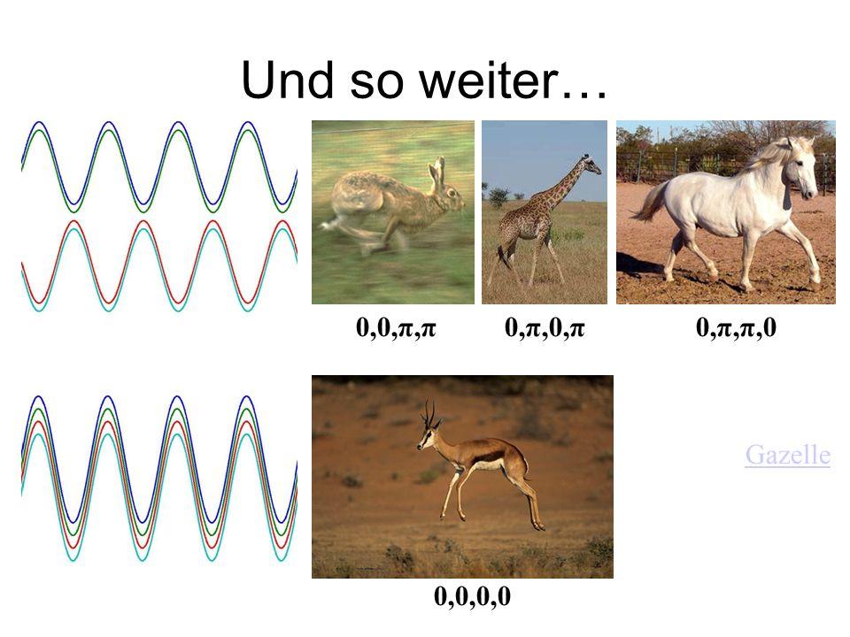 Und so weiter… 0,0,π,π0,π,0,π0,π,π,0 0,0,0,0 Gazelle