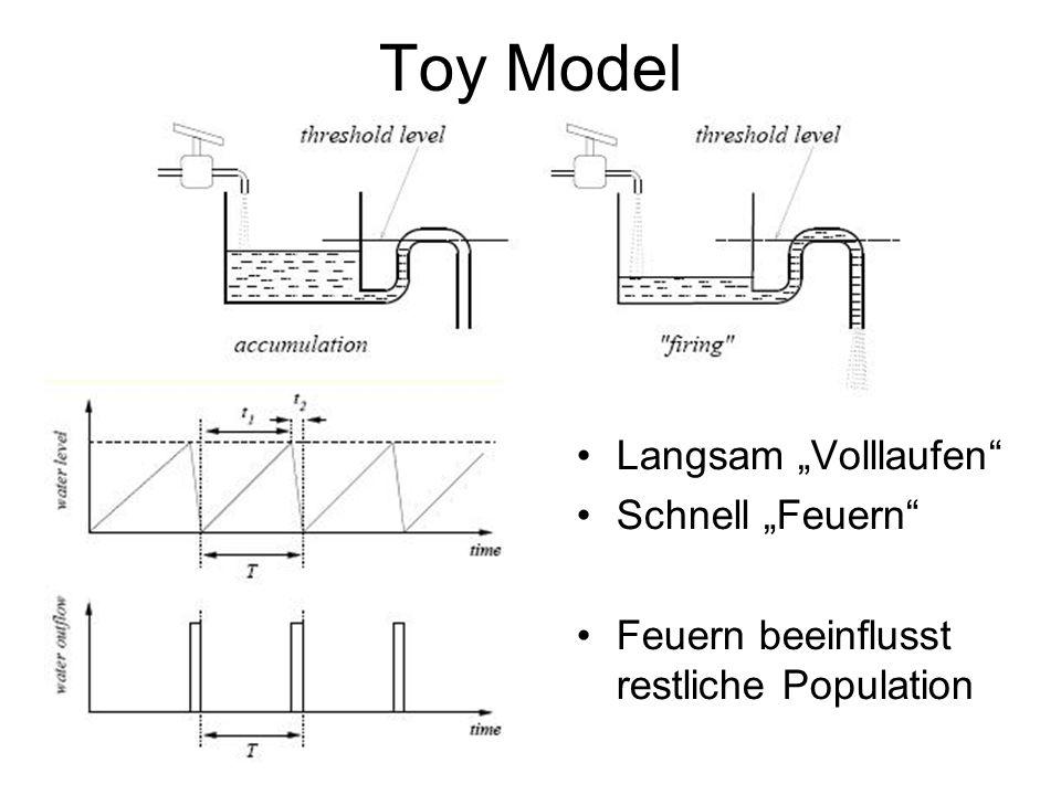 Toy Model Langsam Volllaufen Schnell Feuern Feuern beeinflusst restliche Population