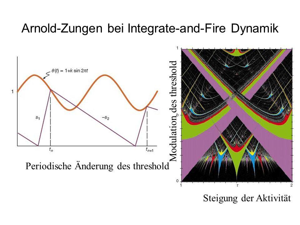 Arnold-Zungen bei Integrate-and-Fire Dynamik Periodische Änderung des threshold Steigung der Aktivität Modulation des threshold