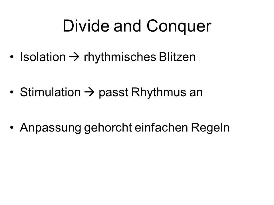 Divide and Conquer Isolation rhythmisches Blitzen Stimulation passt Rhythmus an Anpassung gehorcht einfachen Regeln