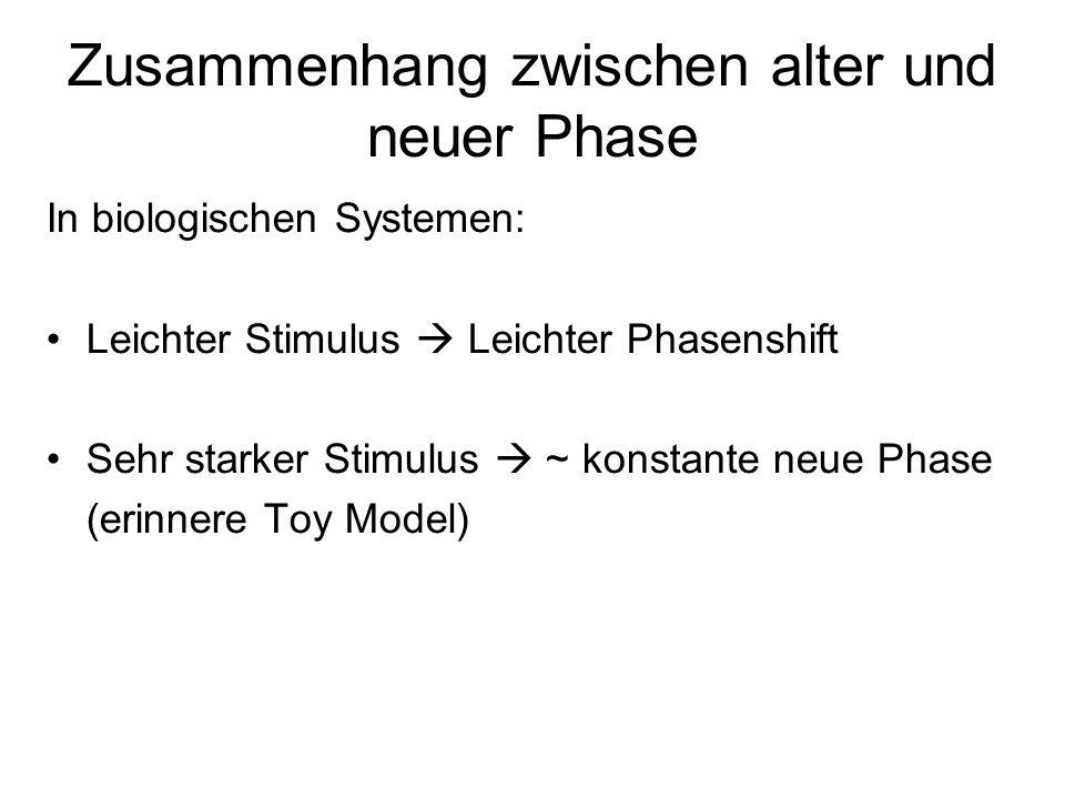 Zusammenhang zwischen alter und neuer Phase In biologischen Systemen: Leichter Stimulus Leichter Phasenshift Sehr starker Stimulus ~ konstante neue Phase (erinnere Toy Model)