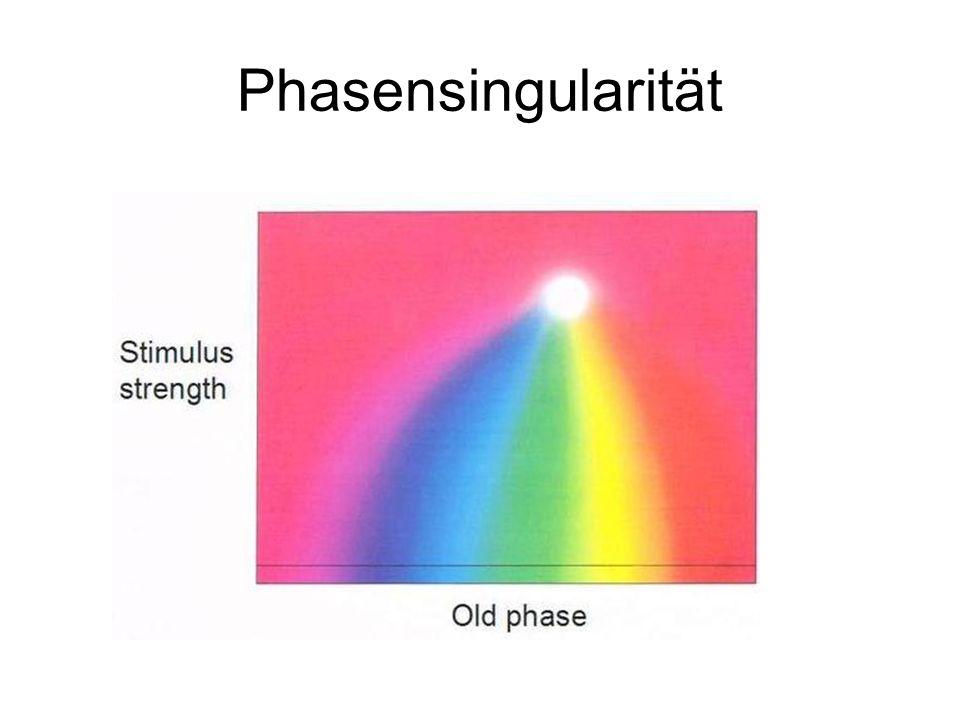 Phasensingularität