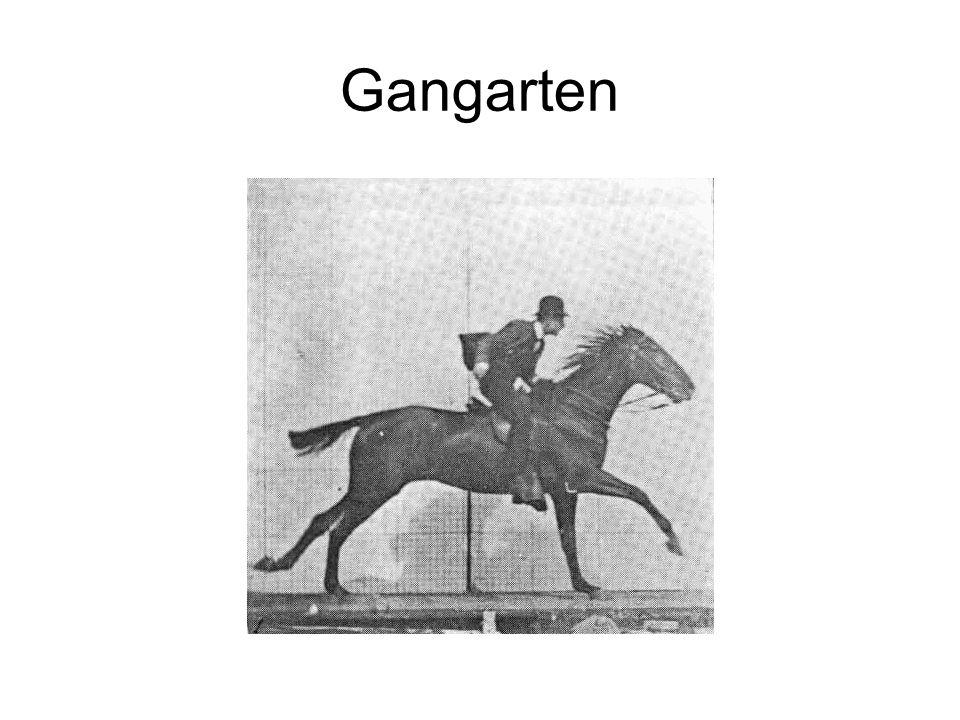 Gangarten