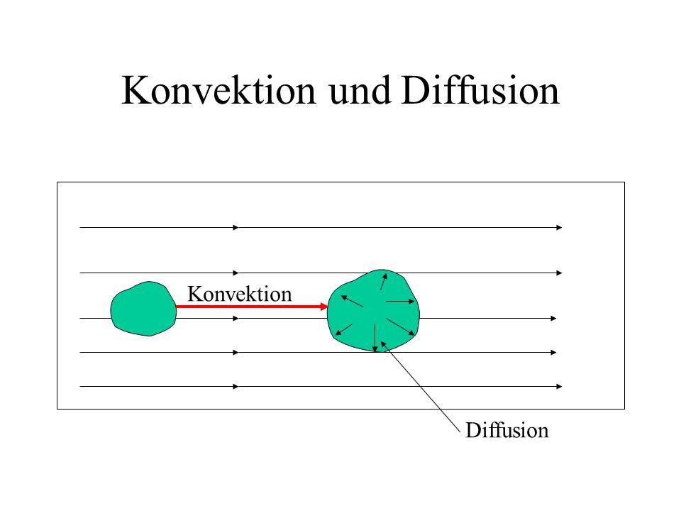 Konvektion und Diffusion Konvektion Diffusion
