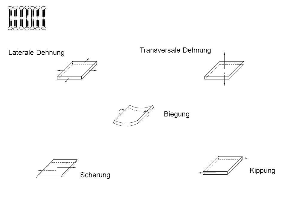 Laterale Dehnung Transversale Dehnung Biegung Scherung Kippung
