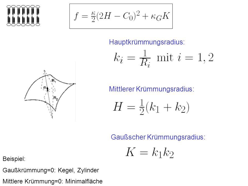 Hauptkrümmungsradius: Mittlerer Krümmungsradius: Gaußscher Krümmungsradius: Beispiel: Gaußkrümmung=0: Kegel, Zylinder Mittlere Krümmung=0: Minimalfläche
