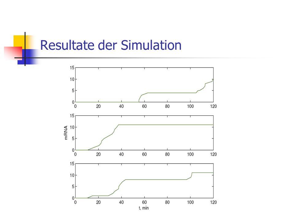 Resultate der Simulation