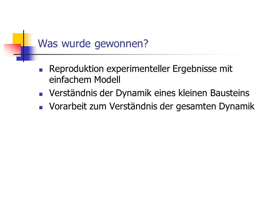 Was wurde gewonnen? Reproduktion experimenteller Ergebnisse mit einfachem Modell Verständnis der Dynamik eines kleinen Bausteins Vorarbeit zum Verstän