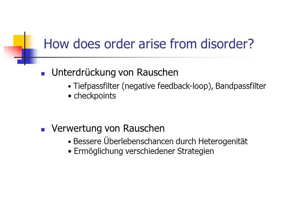 How does order arise from disorder? Unterdrückung von Rauschen Verwertung von Rauschen Tiefpassfilter (negative feedback-loop), Bandpassfilter checkpo