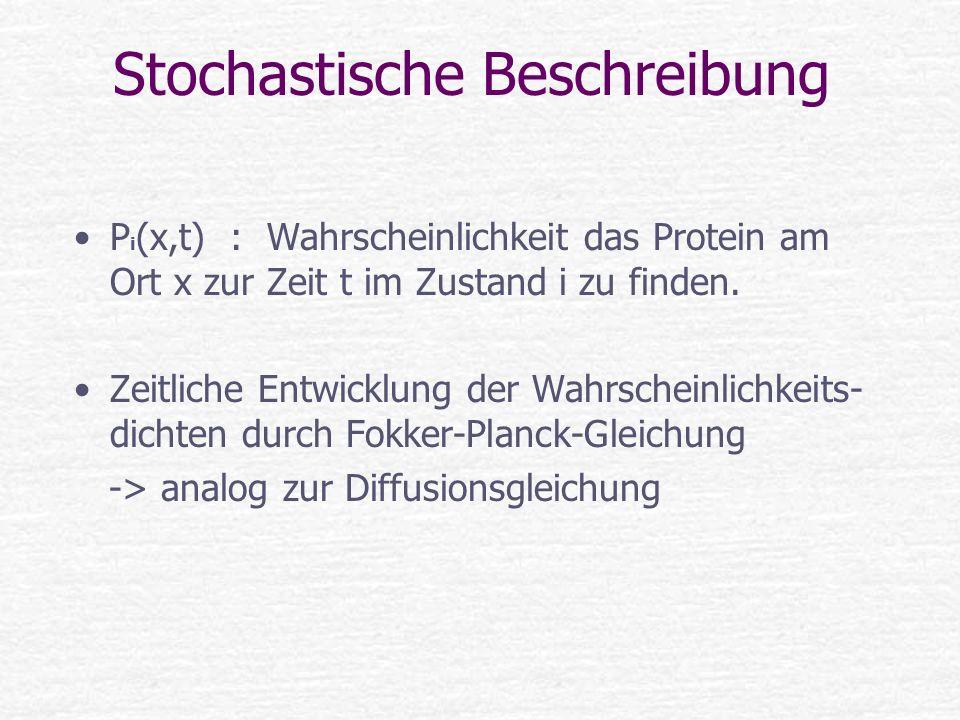 Stochastische Beschreibung P i (x,t) : Wahrscheinlichkeit das Protein am Ort x zur Zeit t im Zustand i zu finden. Zeitliche Entwicklung der Wahrschein