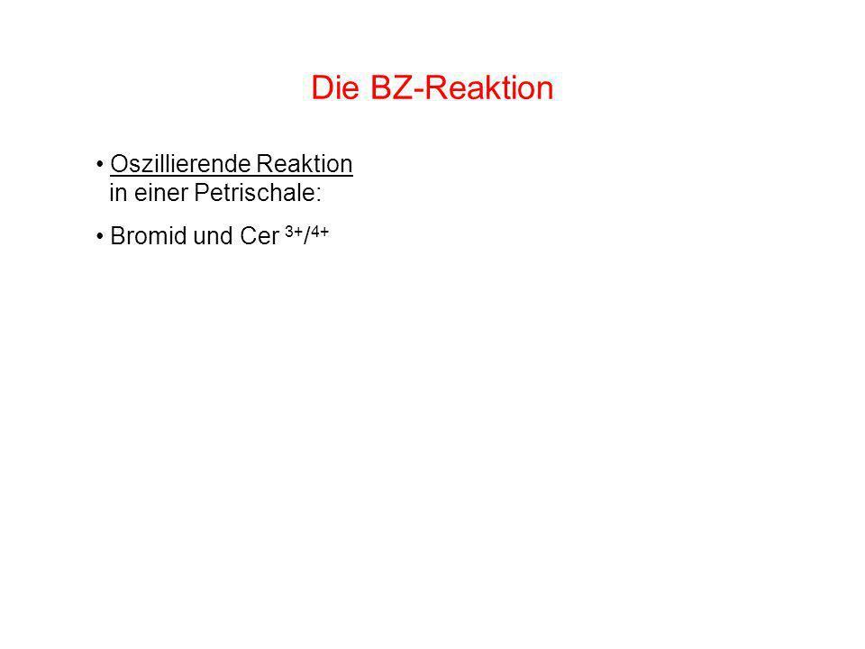 Die BZ-Reaktion Oszillierende Reaktion in einer Petrischale: Bromid und Cer 3+ / 4+