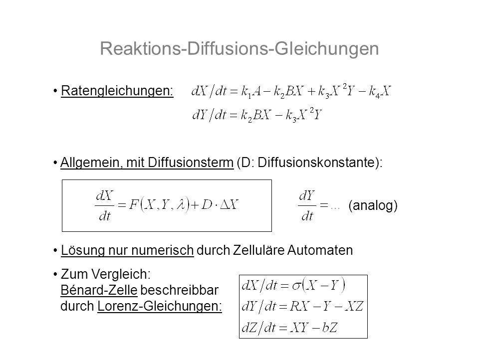 Reaktions-Diffusions-Gleichungen Ratengleichungen: Allgemein, mit Diffusionsterm (D: Diffusionskonstante): Lösung nur numerisch durch Zelluläre Automa