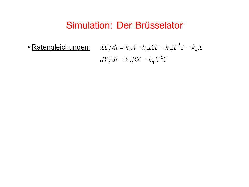 Simulation: Der Brüsselator Ratengleichungen: