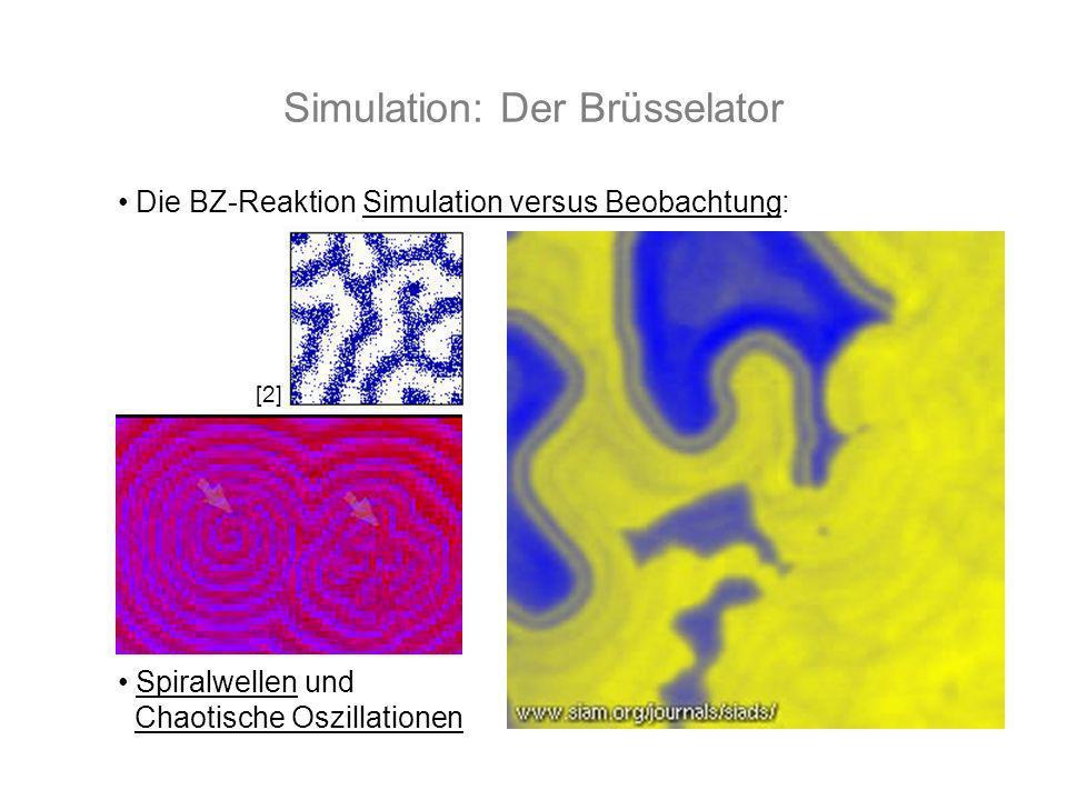 Simulation: Der Brüsselator Die BZ-Reaktion Simulation versus Beobachtung: Spiralwellen und Chaotische Oszillationen [2]