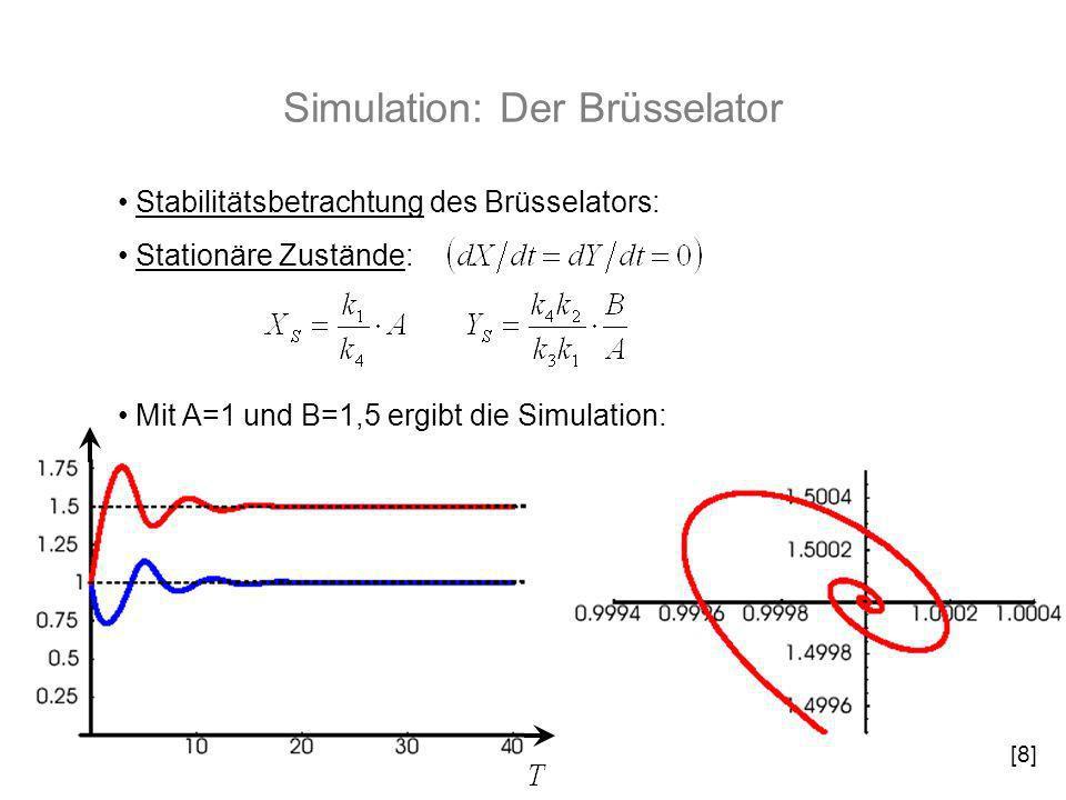 Simulation: Der Brüsselator Stabilitätsbetrachtung des Brüsselators: Stationäre Zustände: Mit A=1 und B=1,5 ergibt die Simulation: [8]