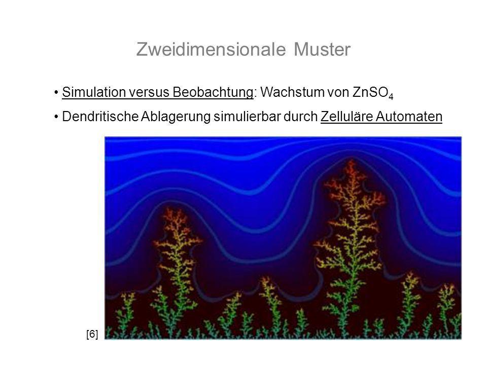Zweidimensionale Muster Simulation versus Beobachtung: Wachstum von ZnSO 4 Dendritische Ablagerung simulierbar durch Zelluläre Automaten [6]