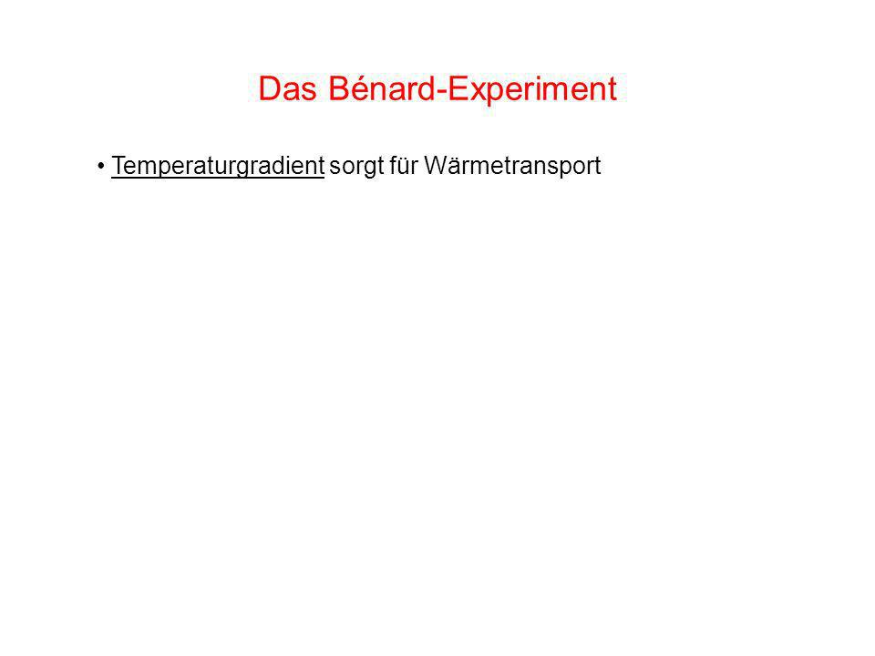Das Bénard-Experiment Temperaturgradient sorgt für Wärmetransport