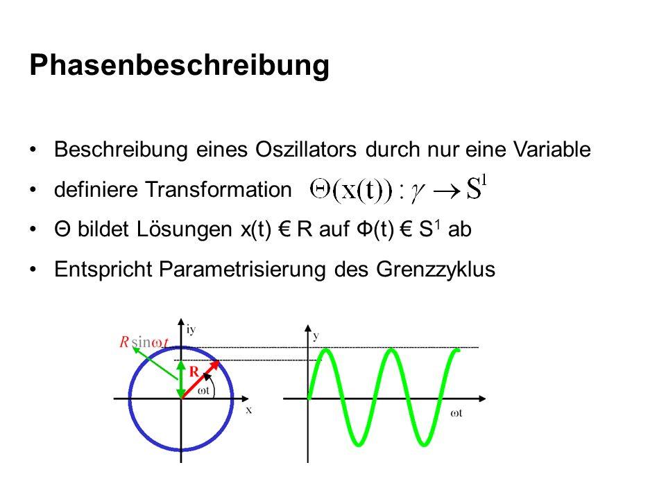 Phasenbeschreibung Beschreibung eines Oszillators durch nur eine Variable definiere Transformation Θ bildet Lösungen x(t) R auf Ф(t) S 1 ab Entspricht
