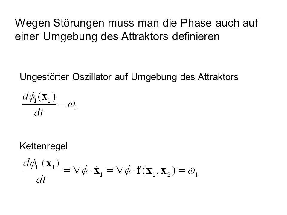 Wegen Störungen muss man die Phase auch auf einer Umgebung des Attraktors definieren Ungestörter Oszillator auf Umgebung des Attraktors Kettenregel