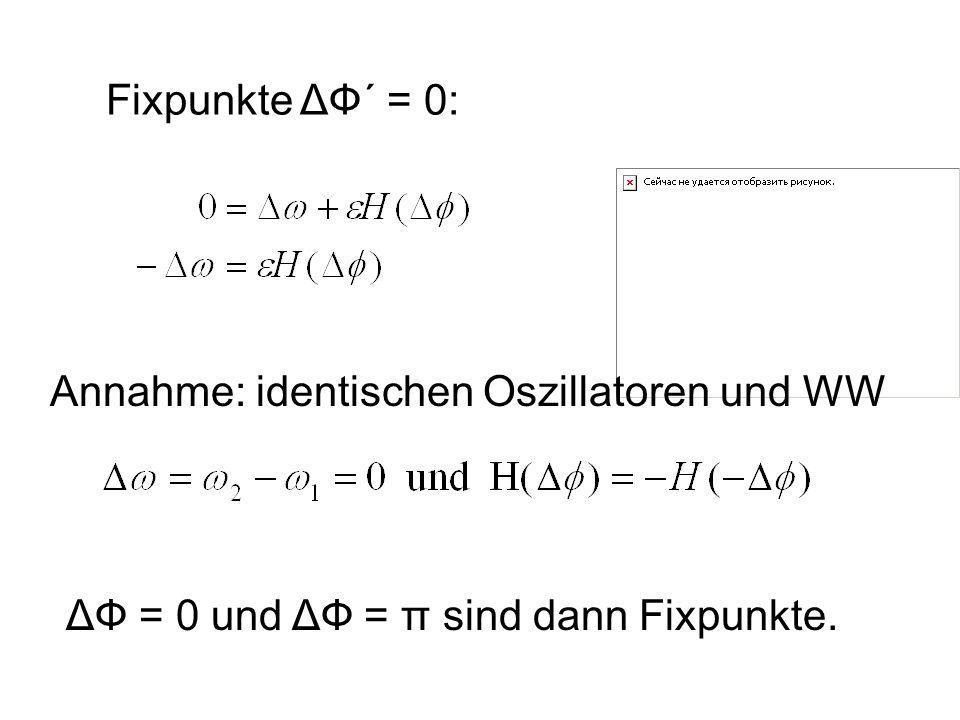 Fixpunkte ΔФ´ = 0: Annahme: identischen Oszillatoren und WW ΔФ = 0 und ΔФ = π sind dann Fixpunkte.