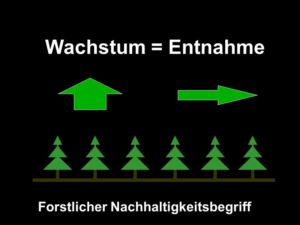 Wachstum = Entnahme Forstlicher Nachhaltigkeitsbegriff