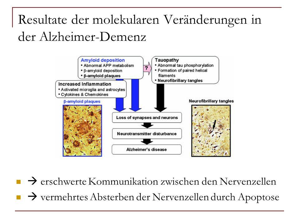 Resultate der molekularen Veränderungen in der Alzheimer-Demenz erschwerte Kommunikation zwischen den Nervenzellen vermehrtes Absterben der Nervenzell
