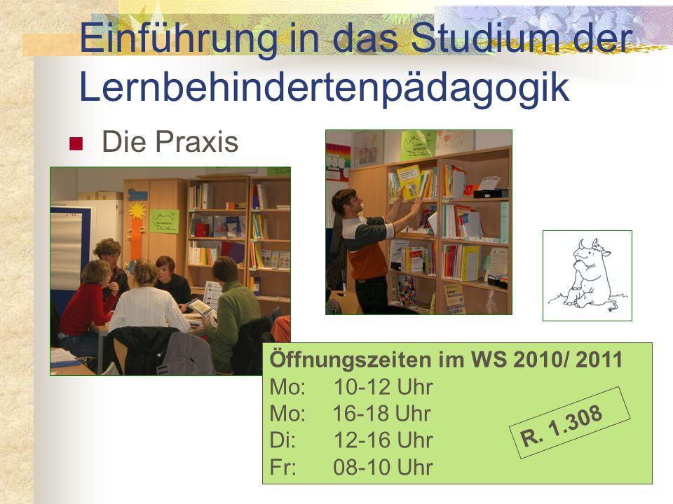 Das Angebot Einführung in das Studium der Lernbehindertenpädagogik Entwicklungsbereiche Lernbereiche Förder diagnostik Praxisnahe Workshops Literatur