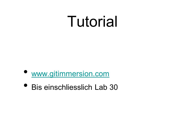 Tutorial www.gitimmersion.com Bis einschliesslich Lab 30