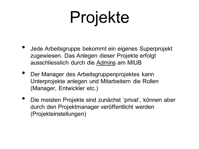 Rollen Pro Projektgruppe gibt es Rollen und Gruppen: Manager Entwickler Read-Only Benutzer werden einzelnen Gruppen/Rollen zugeordnet Projektmanager können Leute als Entwickler zu einem Projekt hinzufügen Zuordnung der Developer durch die Projektmanager (Mark Mertes oder Stefan Heinzelmann) am MIUB