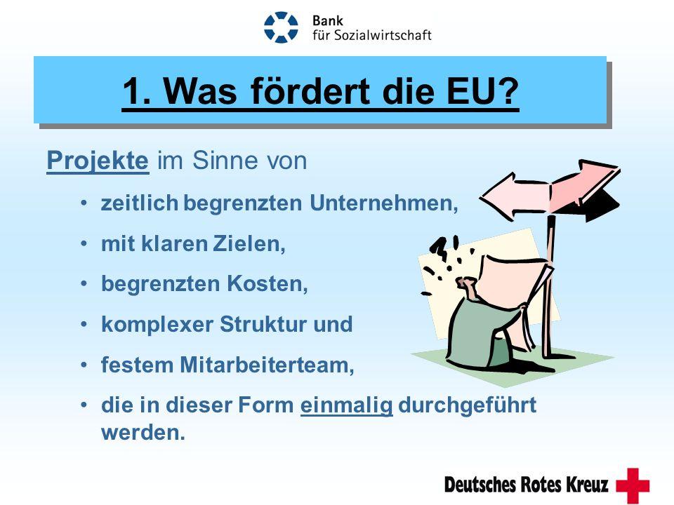 1. Was fördert die EU.