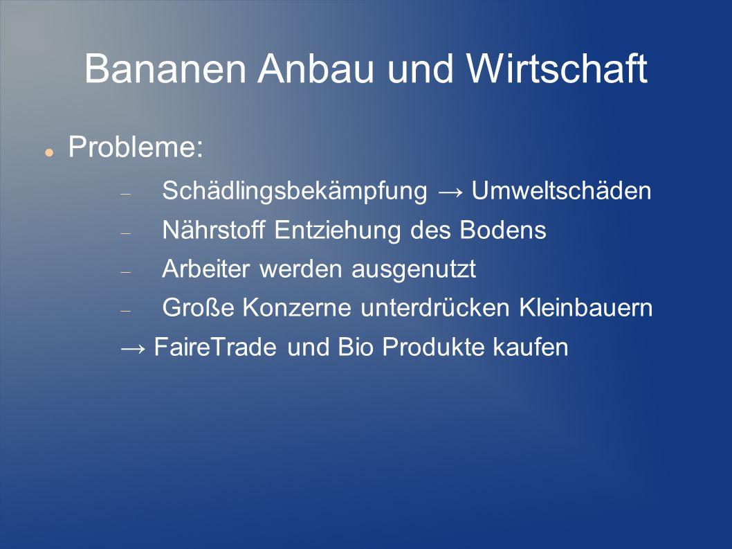 Bananen Anbau und Wirtschaft Probleme: Schädlingsbekämpfung Umweltschäden Nährstoff Entziehung des Bodens Arbeiter werden ausgenutzt Große Konzerne un