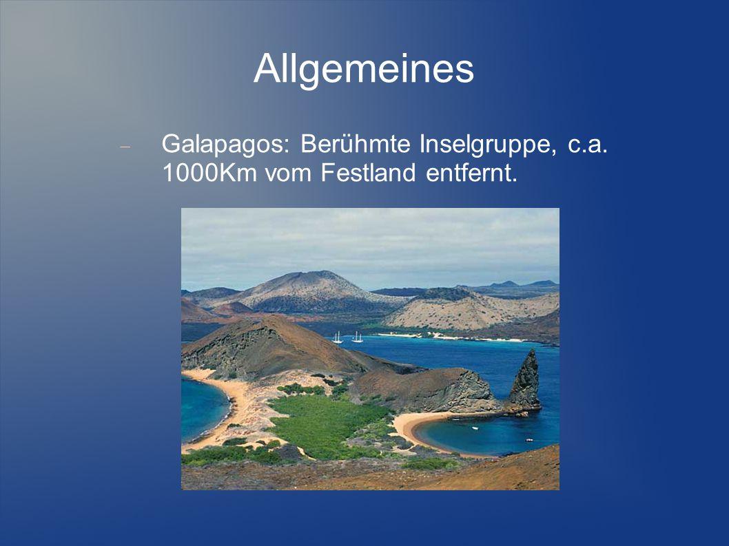 Allgemeines Oriente: Die Regenwald-Region im Osten des Landes.