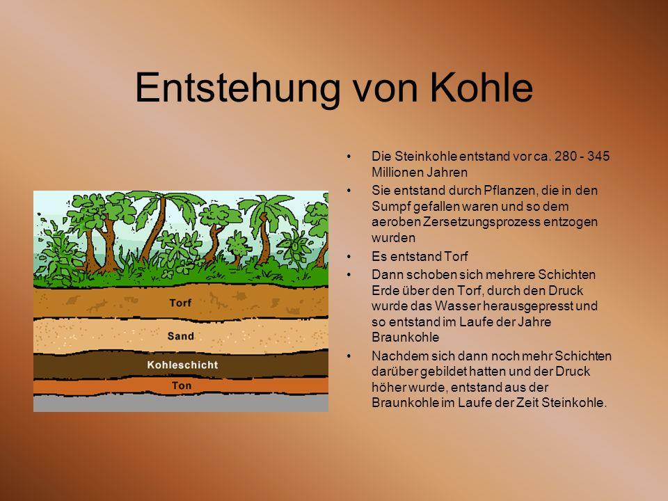 Entstehung von Kohle Die Steinkohle entstand vor ca. 280 - 345 Millionen Jahren Sie entstand durch Pflanzen, die in den Sumpf gefallen waren und so de