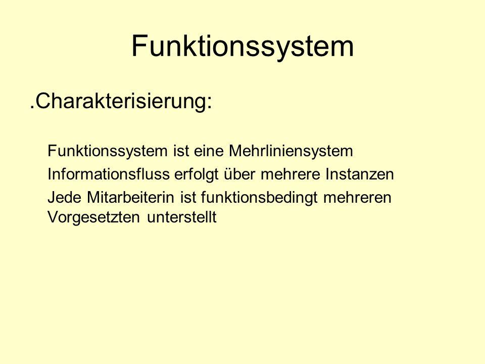 .Charakterisierung: Funktionssystem ist eine Mehrliniensystem Informationsfluss erfolgt über mehrere Instanzen Jede Mitarbeiterin ist funktionsbedingt