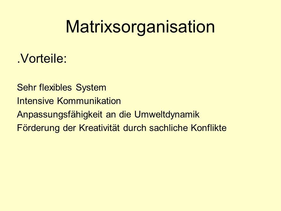 Matrixsorganisation.Vorteile: Sehr flexibles System Intensive Kommunikation Anpassungsfähigkeit an die Umweltdynamik Förderung der Kreativität durch s