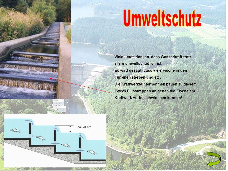 Viele Leute denken, dass Wasserkraft trotz allem umweltschädlich ist. Es wird gesagt, dass viele Fische in den Turbinen sterben und etc. Die Kraftwerk