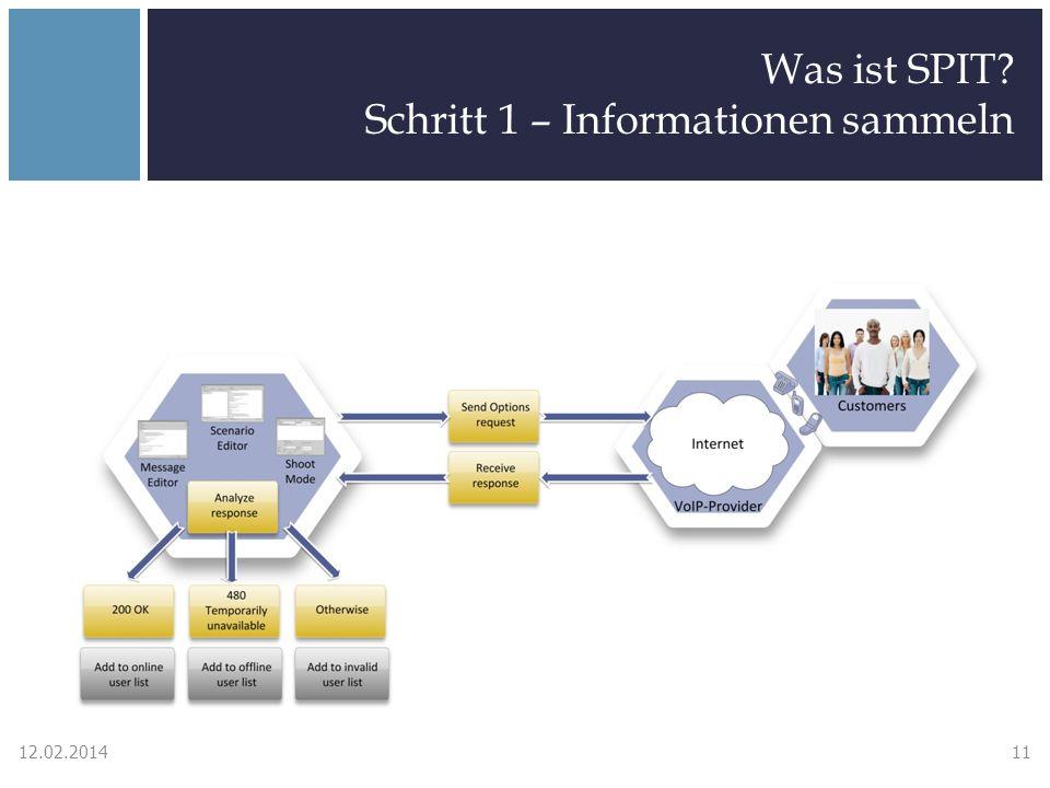 Was ist SPIT? Schritt 1 – Informationen sammeln 12.02.201411