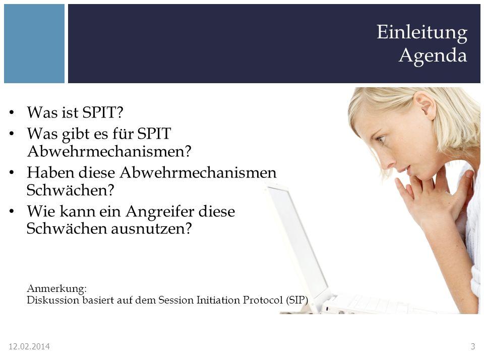 Einleitung Agenda Was ist SPIT? Was gibt es für SPIT Abwehrmechanismen? Haben diese Abwehrmechanismen Schwächen? Wie kann ein Angreifer diese Schwäche