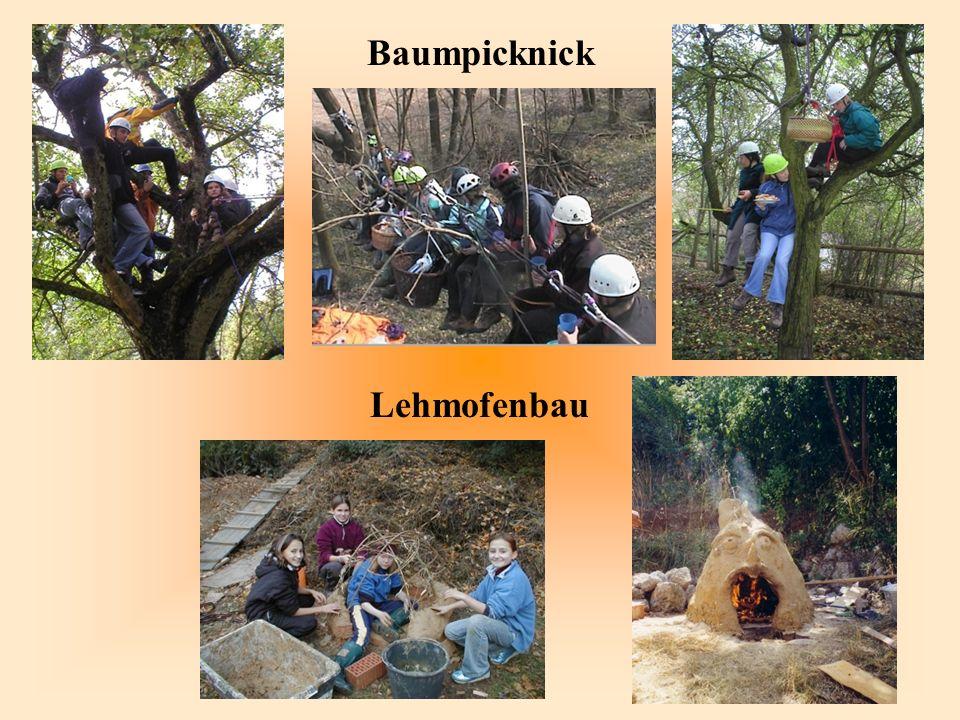 Baumpicknick Lehmofenbau