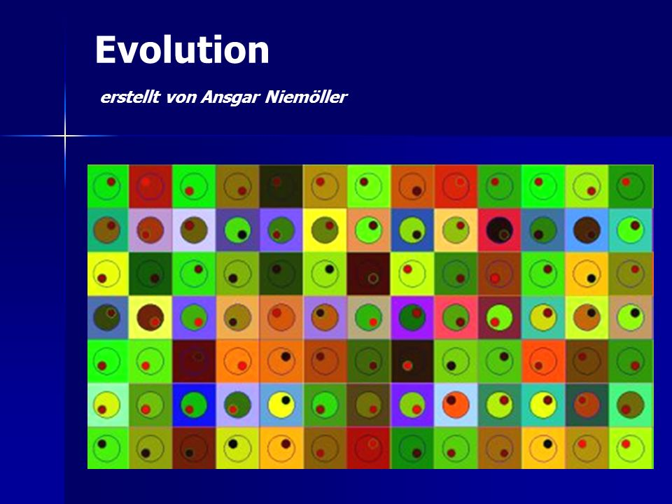 Evolution erstellt von Ansgar Niemöller