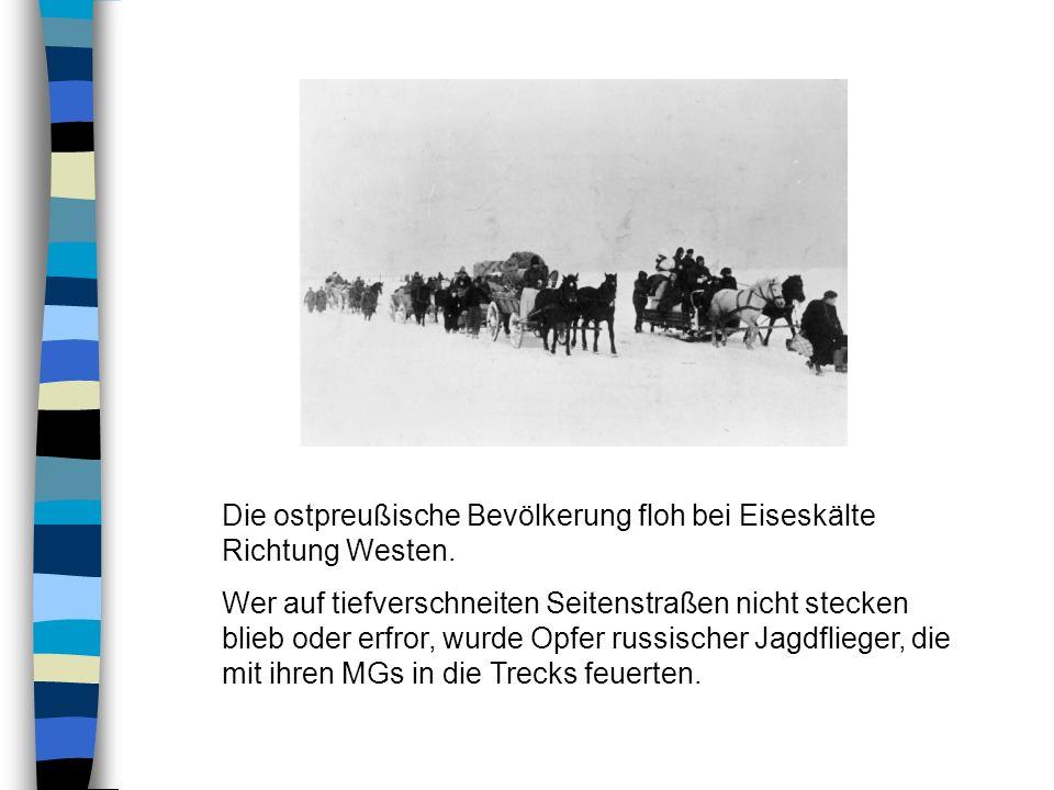 Die ostpreußische Bevölkerung floh bei Eiseskälte Richtung Westen.