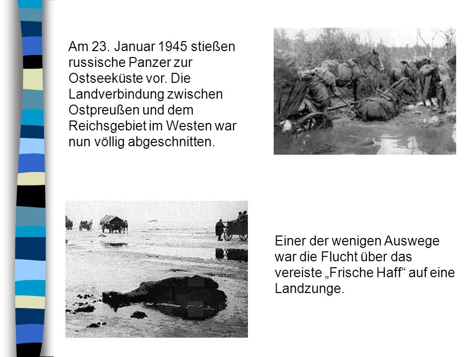 Dort, wo die Russen die Flüchtenden einholten, rollten deren Panzer über Menschen, Pferde und Wagen hinweg. Es bot sich ein Bild des Grauens: Zerquets