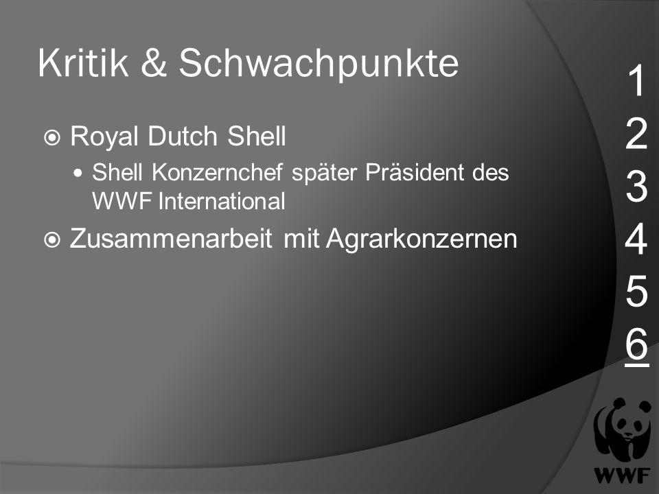 Kritik & Schwachpunkte Royal Dutch Shell Shell Konzernchef später Präsident des WWF International Zusammenarbeit mit Agrarkonzernen 123456123456