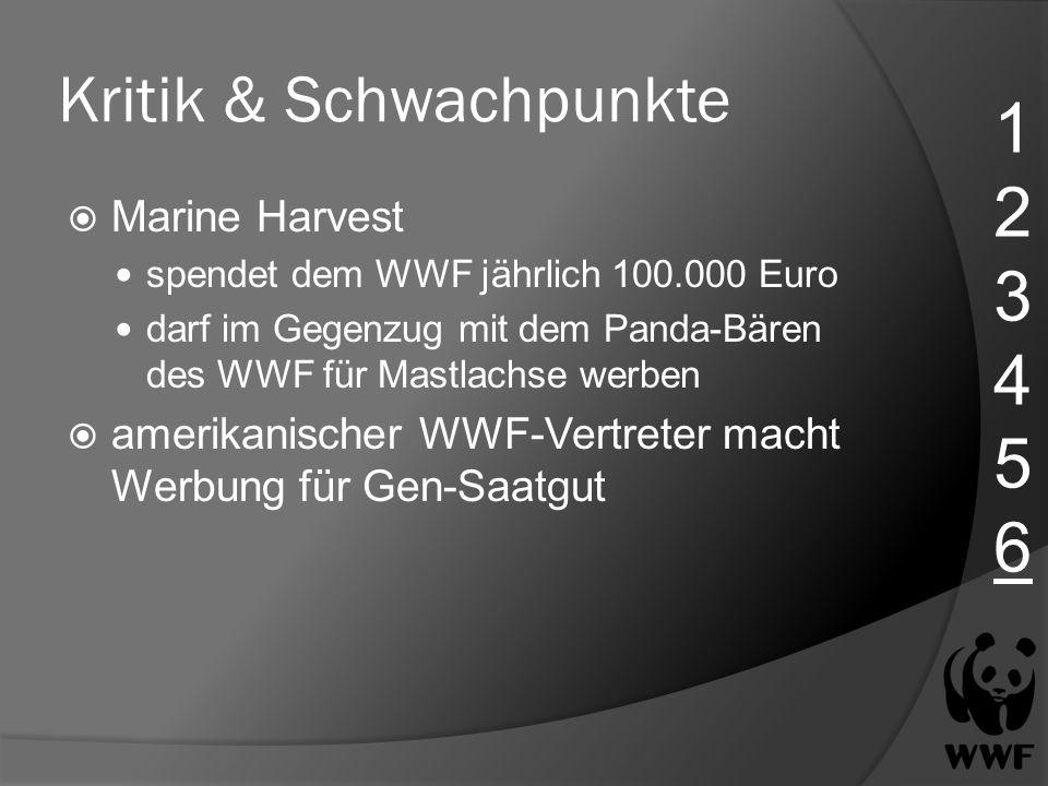 Kritik & Schwachpunkte Marine Harvest spendet dem WWF jährlich 100.000 Euro darf im Gegenzug mit dem Panda-Bären des WWF für Mastlachse werben amerika